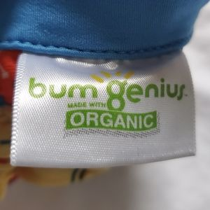 BumGenius Other - BumGenius organic Elemental 2.0 all-in-one diaper